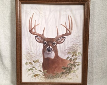 framed dear , Big buck print country primitive farmhouse decor Wall hanging art picture