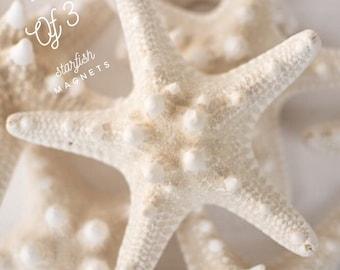 Starfish Magnets, 3 Starfish Magnets, Starfish Decor, Starfish Kitchen Decor