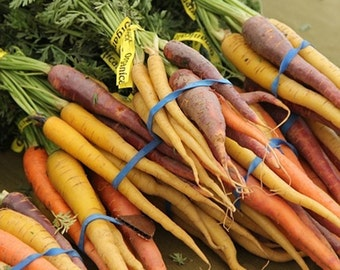 Rainbow Carrot Mix Garden Seed Non-GMO 200+ Seeds Naturally Grown Open Pollinated Heirloom Gardening