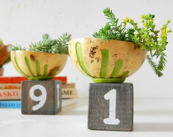Succulent Planter - Flower pot - Mini Cactus Planter - Mini Cactus Pot - Small Natural Planter - Air Planter - Plant Pot - Plant Holder