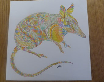 Colouring of the Shrew coloured by Annie (Millie Marotta)