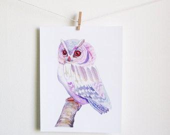 Pink and Purple Owl art print - 11 x 14 inch archival fine art print watercolor