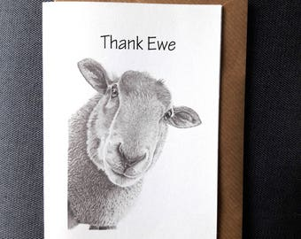 Cute Sheep 'Thank Ewe', Pencil Drawing Art Printed Greeting Card  - Nature Wildlife - Thank You