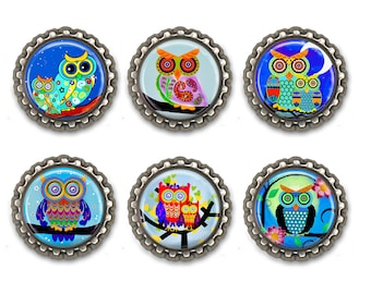 Owl magnets, colorful owl locker magnets.