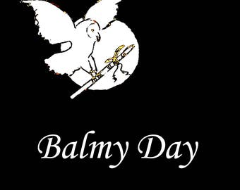 Balmy Day, from the album I Walk in Peace, Native American Flute Music
