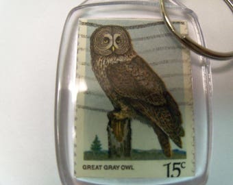 Key Chain, Acrylic Key Chain, Owl Key chain, Gift under 5, Great Horned Owl, Owl Gift