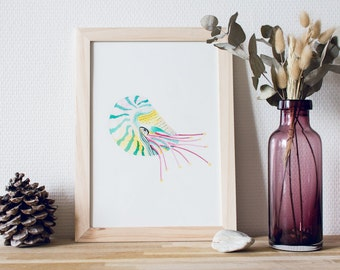 Luminescent Nautilus