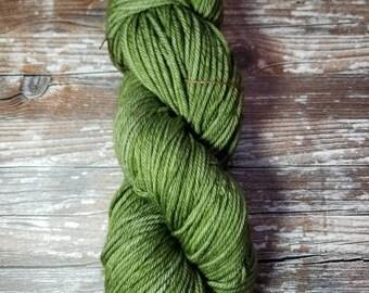 Hand dyed merino worsted weight tonal yarn 100g 175 yards indie dyed merino  south African merino
