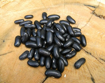 Black Pencil Pod Bean Seeds QTY. 50 Heirloom NON GMO