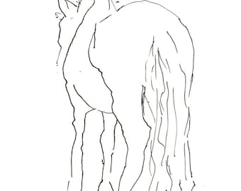 shy horse 8X10 art print, gesture line drawing