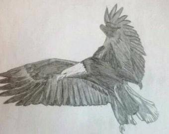Bald Eagle Sketch
