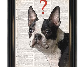 """Boston Terrior Dog dictionary art print. """"What's he thinking""""? Funny curious dog dictionary book page-8x10 inch in size"""