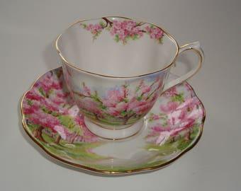 Royal Albert BLOSSOM TIME Tea Cup and Saucer