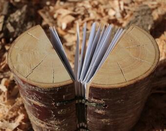 Tree Stump Book