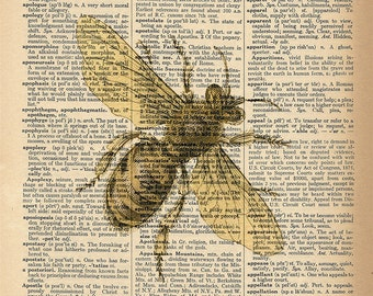 Dictionary Art Print - Bee / Honey Bee - Upcycled Vintage Dictionary Page Poster Print - Size 8x10