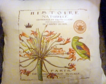 French themed Linen Pillow Cover - Vintage French Ad - Green Bird - 16x16 - Paris Pillow - French Country decor - pillow covers - pillows