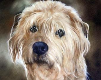 Custom Pet Portrait, Custom Pet Painting, Oil Painting Originals, 12x12, Animal Portraits