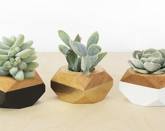 Geometric Mini Planters set of 3, for succulents, Desk and Home Decor, gold