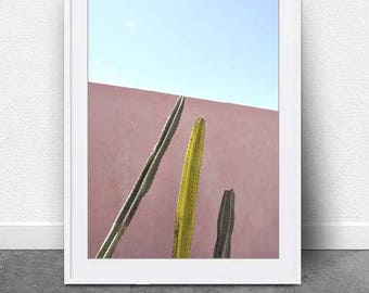 Cactus Trio, DIGITAL DOWNLOAD, Photography, Instant File,Cactus Art, Home Decor, Gift Idea, Modern Art, Minimal, Botanical Print, Art, Digi