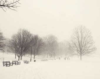 Winter Landscape Photograph - Snowy Winter - Winter Blizzard - Beautiful Nature Scene - Nature Photography - Snow Storm - New York Winter