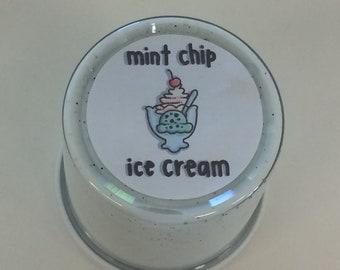 mint chip ice cream slay slime
