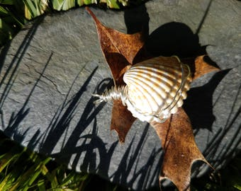 Simple Wire Wrapped Shell Pendant