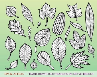 Tree Leaf Illustrations - Digital Vector Graphics for Personal and Commercial Use