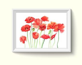 Poppies Flower Watercolour Painting Drawing Art Print N354