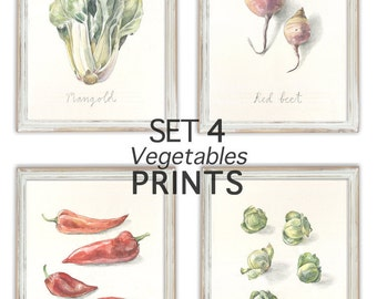 SET 4 PRINT Vegetable drawings -kitchen wall art - Pencil & Watercolor drawings - Veggies still life botanical prints - art by Catalina.