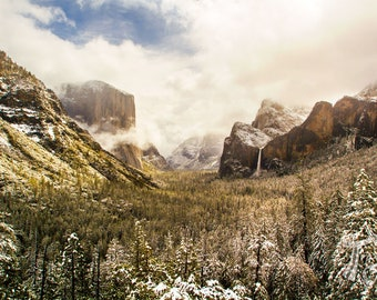 """Yosemite Photography 
