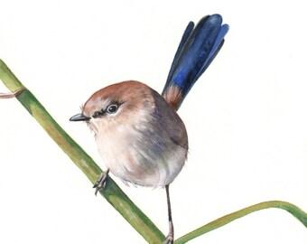 Wren print of watercolor painting - Largest A3 size wall art print - bird art print