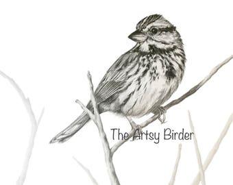 Song Sparrow - Digital Download Wildlife Art Print