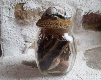 Sea Witch Bottle, Sea Goddess Offering Jar, Goddess charm bottle, water quarter marker, elemental balancing, altar decor, nature table curio