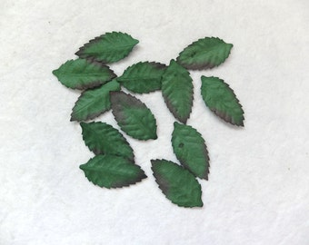 50 mulberry dark green paper leaves (Size 5)