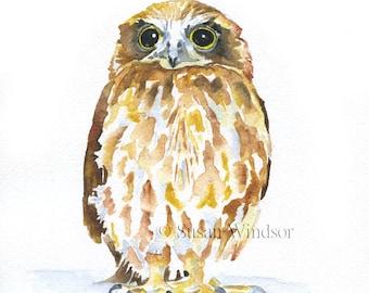 Burrowing Owl Watercolor Print - 16 x 20 - Large Poster Print - Watercolor Painting Reproduction