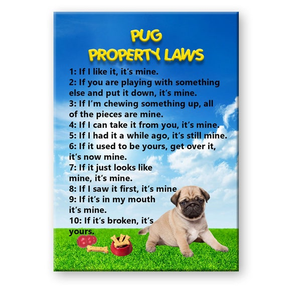 Pug Property Laws Fridge Magnet No 3 Puppy