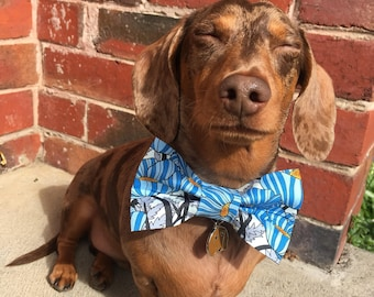 Blue Mood Dog Bow Tie