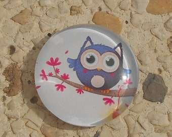Colorful OWL glass cabochon