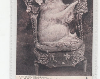 Antique Tuck Postcard Dreaming Dog In Large Chair One Cat On Each Side