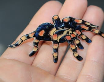 Tarantula Magnet Gift for spider lover for Locker Car or Fridge Tarantula loss memorial