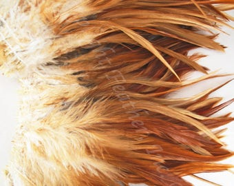 Rooster Feathers Natural Saddle Strung per Foot