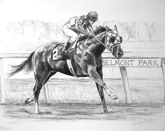 SECRETARIAT Original Art Print