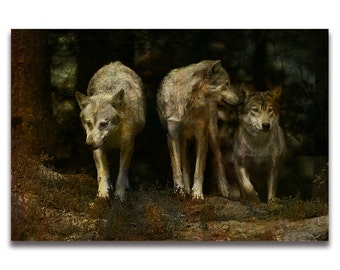 Fine Art Print  of 'Three', Pack of Three Wolves. Wolf pack, landscape, animals,dogs,wildlife, wall decor, JoWalshArt