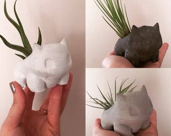 concrete bulbasaur planter-concrere Pokemon planter-airplant holder-House plant-cactus holder-succulent holder air plant holder-house plant