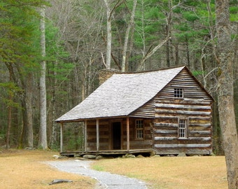 Cades Cove cabin, Smoky Mountain National Park, forest