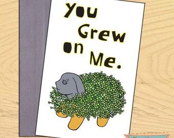 You Grew on Me, chia pet encouragement flirty romantic funny blank card