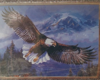 Eagle Paint By Number