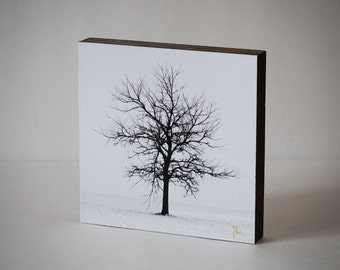 B&W Tree Photography- Wood Photo Block, Winter Tree Silhouette, Lone Tree, Tree Wall Art, , Ready to Hang, Wood Art Office Decor, Minimalist