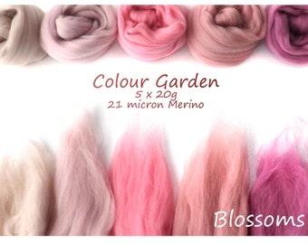 Pink Merino Shade sets - 21 micron Merino wool - 100g - 3.5oz - 5 x 20g - Colour Garden - BLOSSOMS