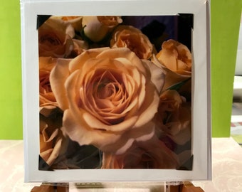 Yellow Rose photo card